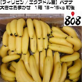 【フィリピン/エクアドル産】訳ありバナナ 大きさおまかせ 1箱 13~15kg前後【送料別】