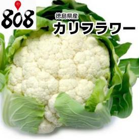 【徳島県産】カリフラワー L~2Lサイズ 1株 約900g【野菜詰め合わせセットと同梱で送料無料】【送料別】