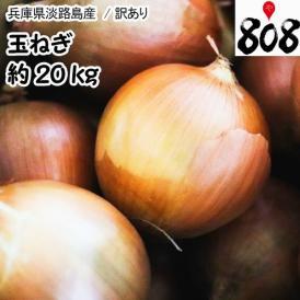 【兵庫県淡路島産】訳あり 淡路玉ねぎ 大きさおまかせ 約20kg