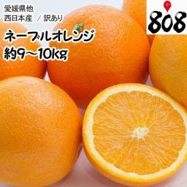 【送料無料】【西日本産】訳あり ネーブルオレンジ 大きさおまかせ 風袋込 約9~10kg