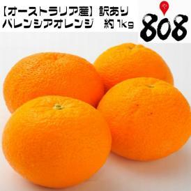 【オーストラリア産】訳あり バレンシアオレンジ 約1Kg