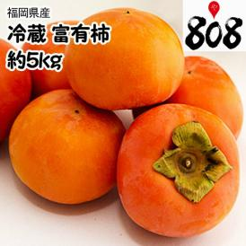 【送料無料】【福岡県産】冷蔵 富有柿 真空パック 大きさおまかせ 1箱 約5kg