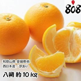 【送料無料】【翌日お届け】【西日本産】訳あり 八朔 大きさおまかせ 約10kg