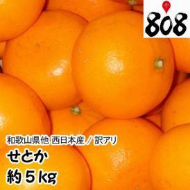 【翌日お届け】【西日本産】訳あり せとか 大きさおまかせ 約5kg(北海道沖縄別途送料加算)