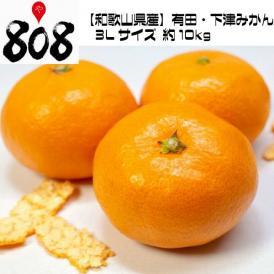 【和歌山県産】有田・下津みかん 3Lサイズ 約10kg