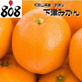 【和歌山/徳島県産】訳あり 下津みかん他 3Lサイズ 約9kg