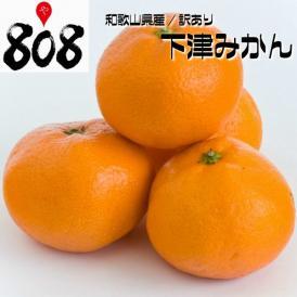 【和歌山県産】訳あり 下津みかん 大きさおまかせ 約10kg