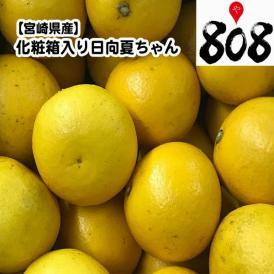 【送料無料】【宮崎県産】日向夏ちゃん 化粧箱入り 約2.5kg