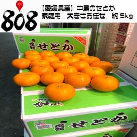 【愛媛県産】中島のせとか 家庭用  大きさお任せ 約5kg