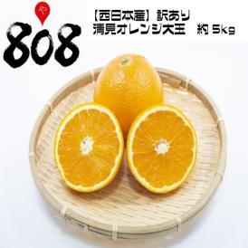 【送料無料】【西日本産】訳あり 清見オレンジ 大玉 約5kg(北海道沖縄別途送料加算)