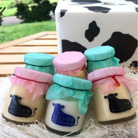 かわいい牛柄ににっこり☆[数量限定・在庫限り] お得な牧場プリン2種10個セット
