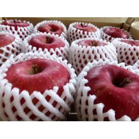 予約販売 秋田県横手市平鹿産の贈答用の特秀<ふじりんご>です。