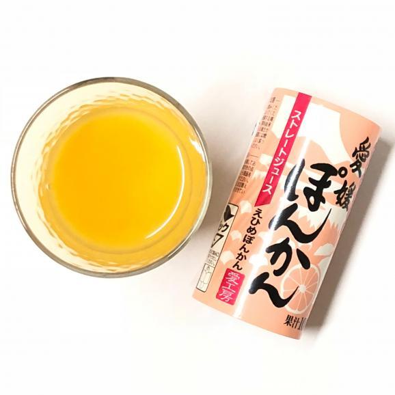 愛媛ぽんかんジュース(ストレート)30本02