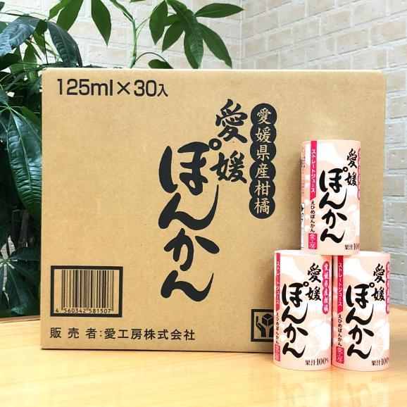 愛媛ぽんかんジュース(ストレート)30本05
