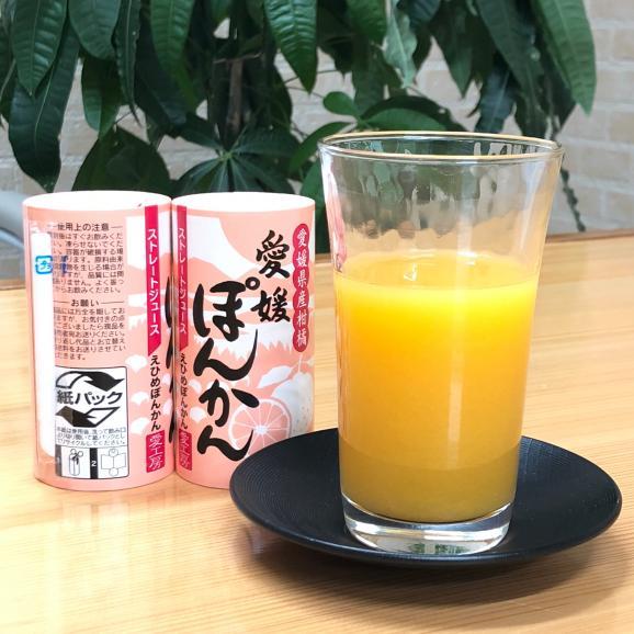 愛媛ぽんかんジュース(ストレート)30本06