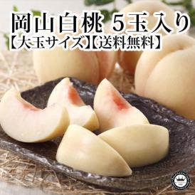 岡山白桃(はくとう モモ) 岡山県産 約300g×5玉(化粧箱入り) 送料無料