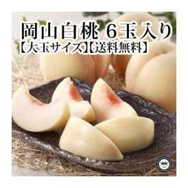 岡山白桃(はくとう モモ) 岡山県産 約300g×6玉(化粧箱入り) 送料無料