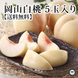 岡山白桃(はくとう モモ) 岡山県産 約240g×5玉(化粧箱入り) 送料無料