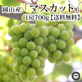 マスカットぶどう(葡萄) 岡山県産 約700g×1房(化粧箱入り) 送料無料