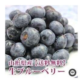生ブルーベリー 山形県産 100g×6パック入り 送料無料 50箱限定