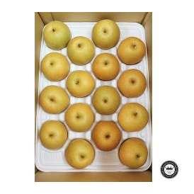 秋栄梨(あきばえなし) 鳥取県産 約5kg前後(16~20玉入り) 送料無料 赤梨