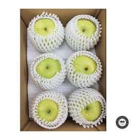 秋麗梨(しゅうれいなし) 鳥取県産 約3kg前後(6玉入り) 送料無料 希少な青梨