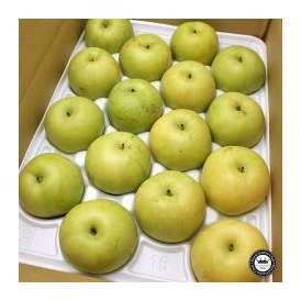 秋麗梨(しゅうれいなし) 鳥取県産 約5kg前後(16~20玉入り) 送料無料 希少な青梨