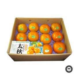 太秋柿(たいしゅうがき) かきの王様 熊本県産 10~14玉入り 送料無料