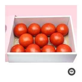 完熟フルーツトマト 長野県産 1kg~1.2kg前後(12~18玉入り/ギフト箱入り) 送料無料