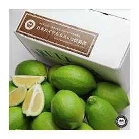 国産レモン 約2.5kg(28玉前後入り) 和歌山県有田川町産 減農薬ハウス栽培 送料無料