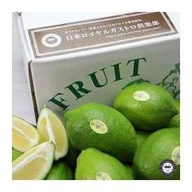 国産レモン 約2.5kg 高知県山北町産 温室ハウス栽培 送料無料