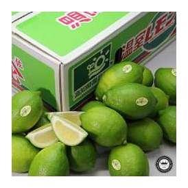 国産レモン 約5kg 高知県山北町産 温室ハウス栽培 送料無料