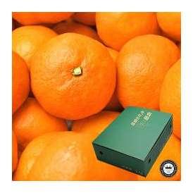 有田みかん 特秀品・約3kg 和歌山県産温州みかん 送料無料 糖度12度以上