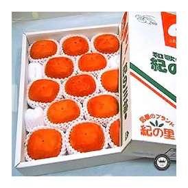 紀ノ川柿(きのかわがき/ひらたねなしかき) 和歌山県産 大玉13玉入り(約3kg) 送料無料
