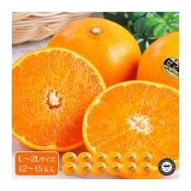 せとか 愛媛県産みかん(蜜柑) L~2L寸 約3kg 12~15玉 送料無料