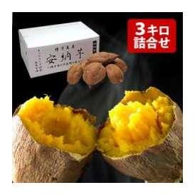 甘熟 安納芋(あんのういも) 約3kg S~M寸 鹿児島県種子島産 熟成貯蔵 安納紅芋 送料無料