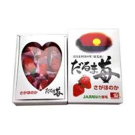だるま苺 さがほのか(佐賀ほのか) いちご(苺) 高知県産 約450g 化粧箱入り 送料無料