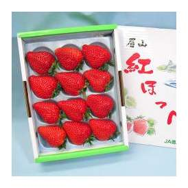 紅ほっぺ いちご(苺) 徳島県産 約450g 化粧箱入り 送料無料