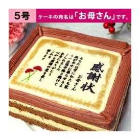 母の日 ケーキで感謝状(カーネーション) 「お母さん」 5号サイズ メッセージお菓子