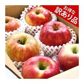 訳あり 林檎(りんご) おまかせ詰合せ 岩手県産 約2kg(6玉入り) 送料無料