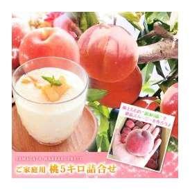 桃(もも) ご家庭用 約5kg 22~25玉入り 小玉サイズ 山形県産 送料無料 スムージー・ジュース用