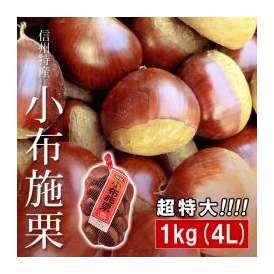 小布施栗 おぶせ くり 超特大 4Lサイズ 約1kg 長野県小布施町産 長野県産 無燻蒸 生栗