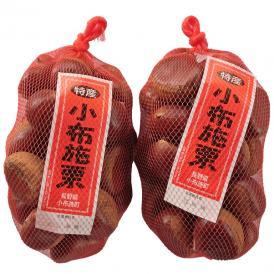 小布施栗 おぶせ くり 特大 3Lサイズ 約2kg 長野県小布施町産 長野県産 無燻蒸 生栗