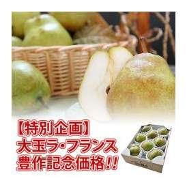 【限定販売】 大玉 ラ・フランス 秀品 3kg(8~9玉) 4L~5Lサイズ 山形県産 送料無料