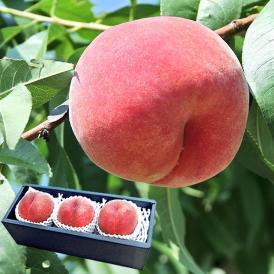 フルーツ王国・山梨県から生産者限定のおいしい桃をお取り寄せ!