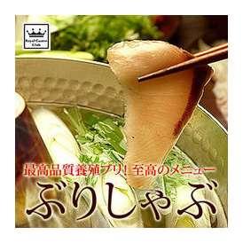 愛媛県 ブランド魚 戸島一番ブリ しゃぶしゃぶセット