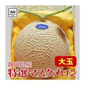 特選 温室マスクメロン 大玉×1玉 静岡県産