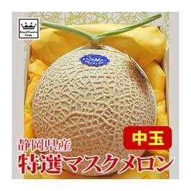 特選 温室マスクメロン 中玉×1玉 静岡県産