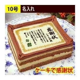 ケーキで感謝状 名入れ 10号サイズ 送料無料