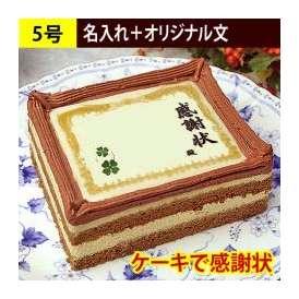 ケーキで感謝状 名入れ+オリジナル文 60文字以内 5号サイズ